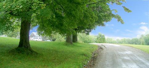 kushi_road_3.jpg